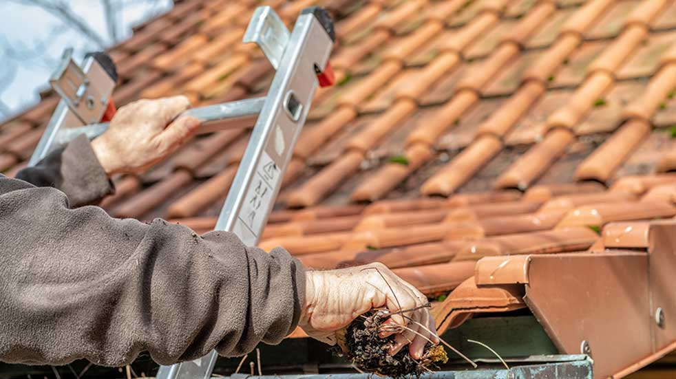 Protect your home and pets this winter clearing leaves gutter