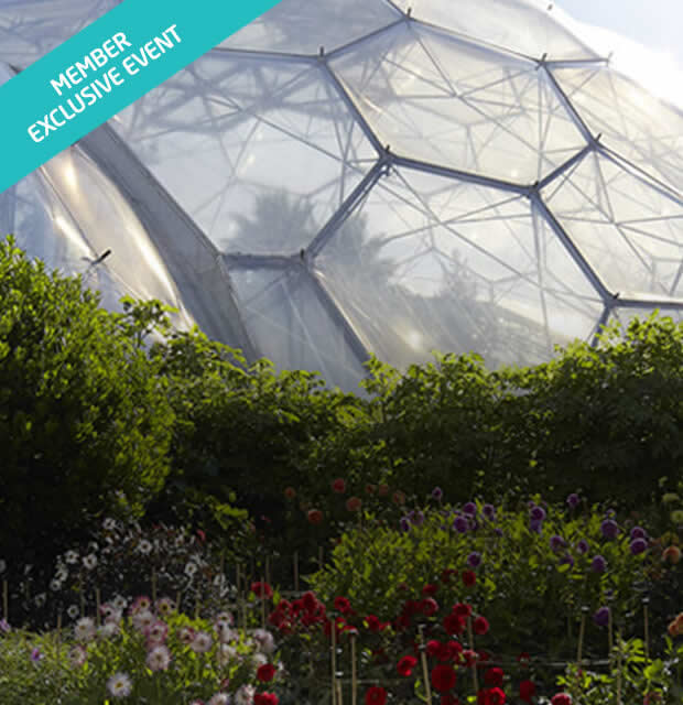 Eden Project Summer Day Out