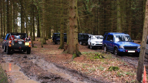 A group of 4x4's going through the woods