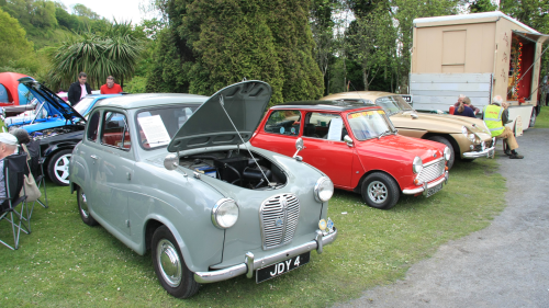 Several classic cars lined up in a row. One with the hood propped over for display