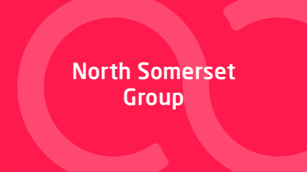 North Somerset Group