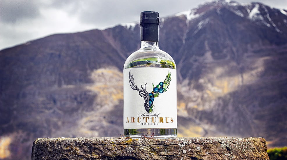 Bottle of Gin with a mountain in the background