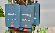 VIP passes from Boundless