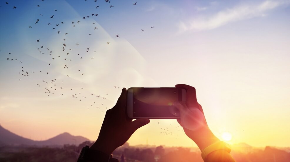 Person taking a photo of birds flying over a sunset with a smart phone