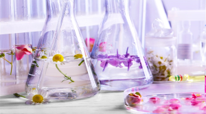 Perfume making class courses perfumery